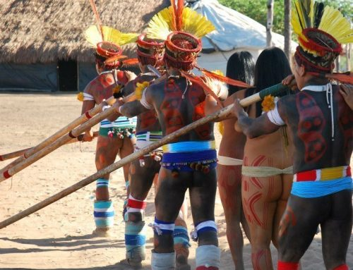 Update on the Work of VE Affiliate Maloca & it's Alliance with the Kamayura People of Brazil.
