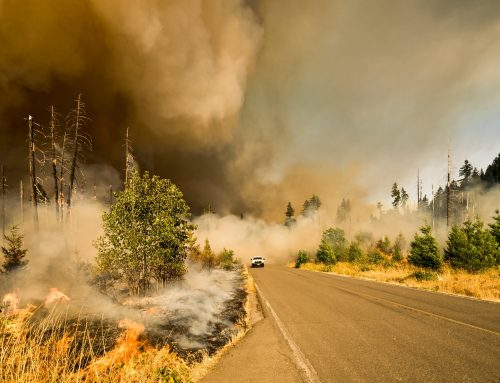 An unusual active season II: Fire – Building Climate Change Resilient Communities